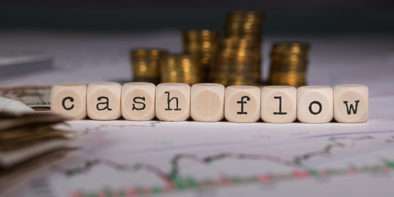 Cash Management and Cash Flow Budget